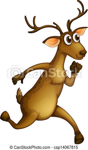 Un ciervo corriendo - csp14067815