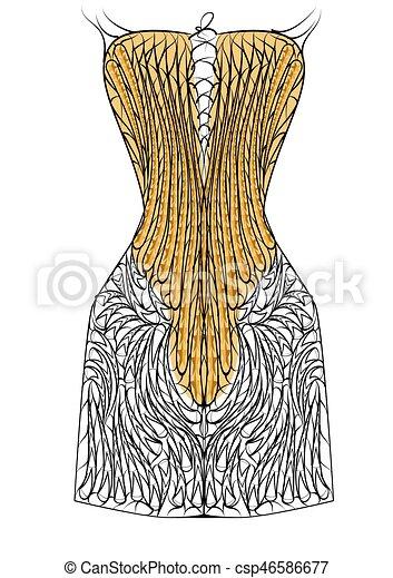 corset - csp46586677