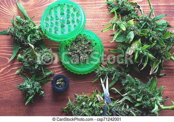 corte, moedor, marijuana, moer, cannabis, verde, fresco - csp71242001
