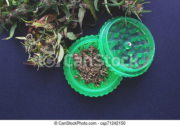 corte, moedor, marijuana, moer, cannabis, verde, fresco - csp71242150
