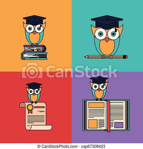 coruja, escola, jogo, graduação, multicolored, elementos, fundo - csp67308423