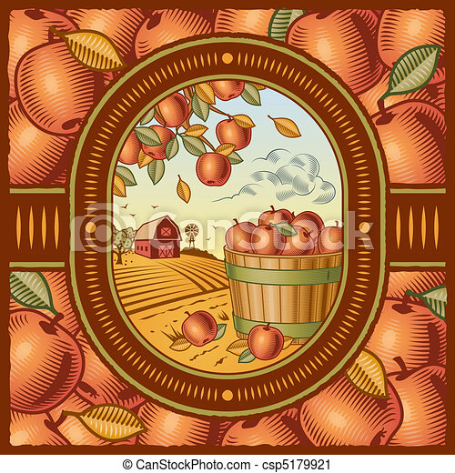 La cosecha de manzana - csp5179921