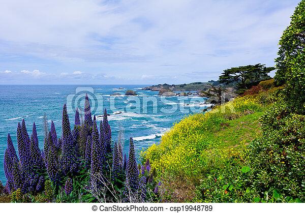 costa california - csp19948789
