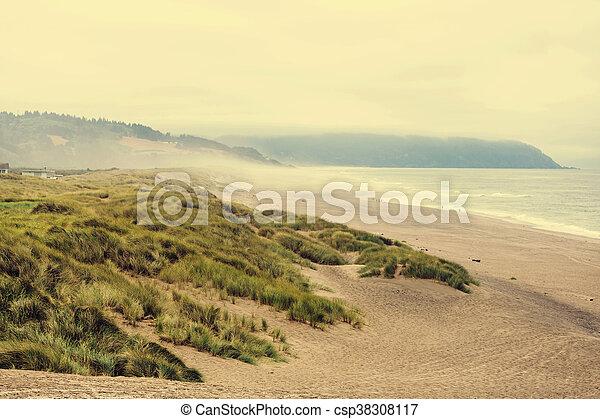 Costa de Oregón - csp38308117