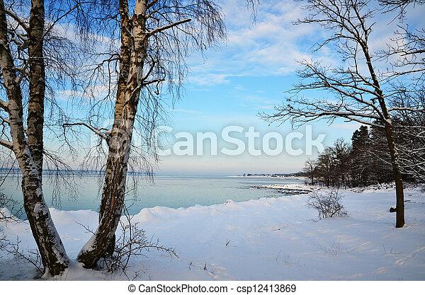 costa, inverno, vista - csp12413869