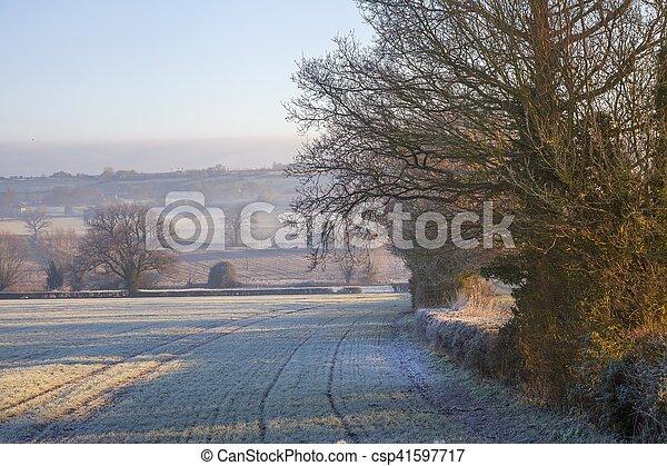 Paisaje Cotswold en invierno - csp41597717