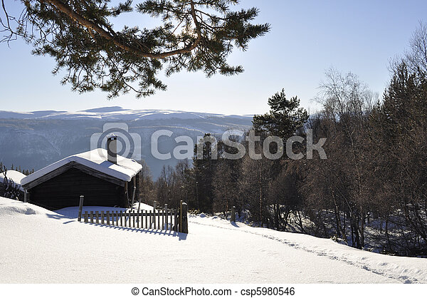 cottage in the winter - csp5980546