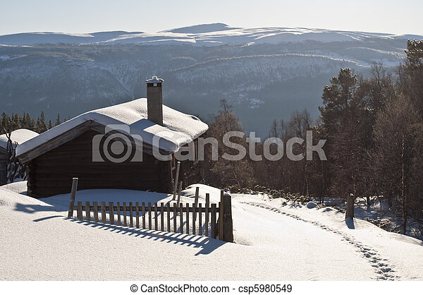 cottage in the winter - csp5980549