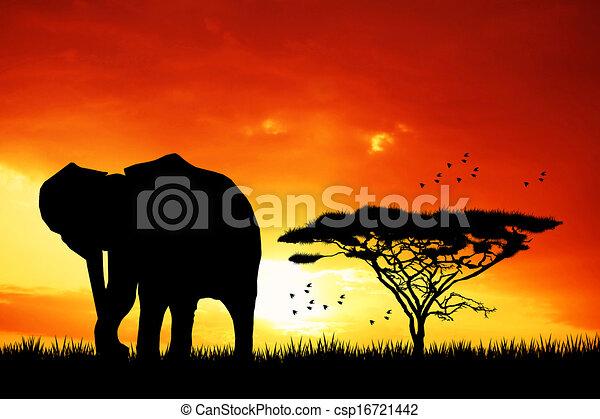 Coucher soleil l phant l phant paysage africaine - Dessin paysage africain ...
