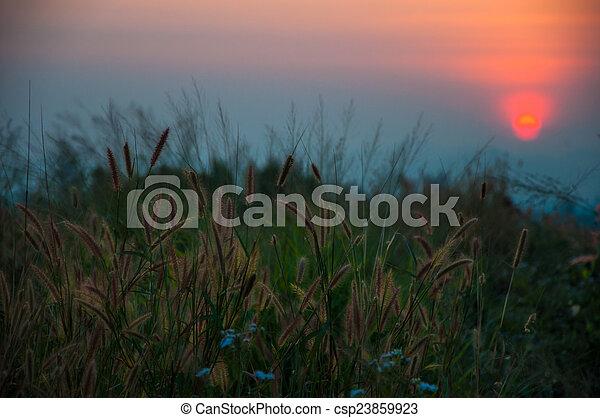 couchers de soleil - csp23859923