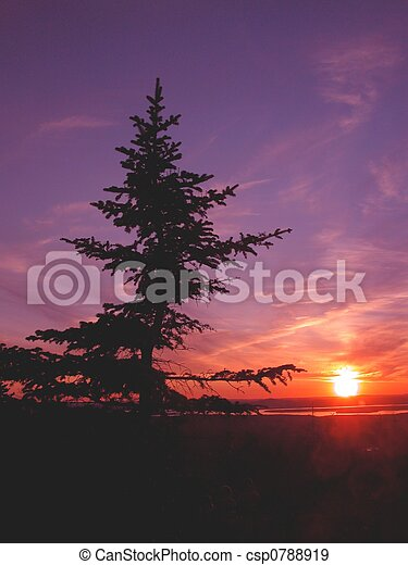 couchers de soleil - csp0788919