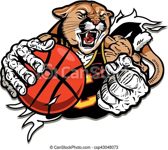 cougar basketball player - csp43048073