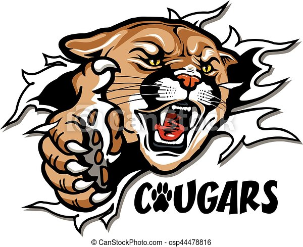 cougars mascot ripping through the background for school vector rh canstockphoto com