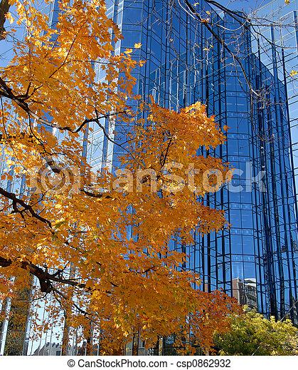 couleur, automne - csp0862932