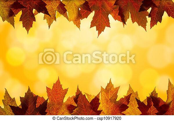 couleur, feuilles, lumière soleil, fond, automne, frontière, érable - csp10917920