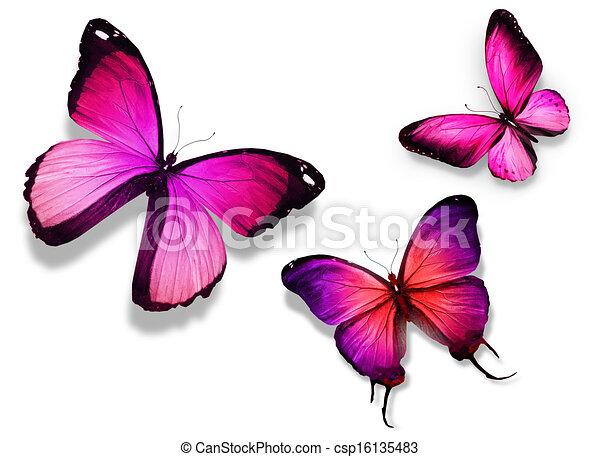 Couleur papillon trois couleur isol trois fond - Papillon dessin couleur ...