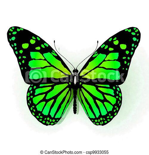Couleur papillon vert couleur papillon isol - Papillon dessin couleur ...
