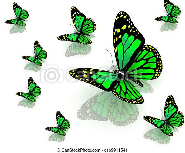 Couleur papillons vert - Papillon dessin couleur ...