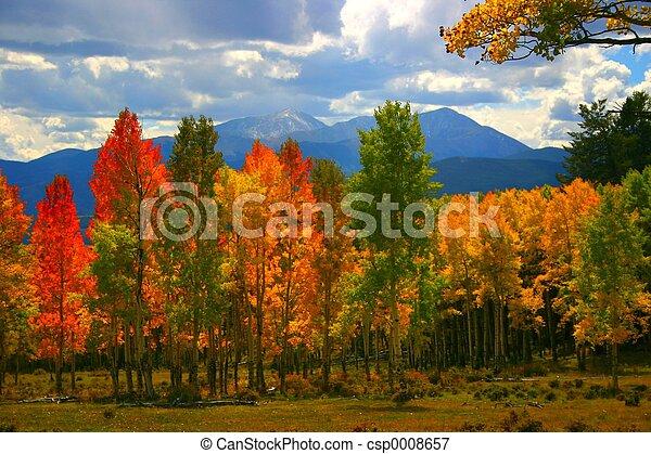 couleurs, automne - csp0008657