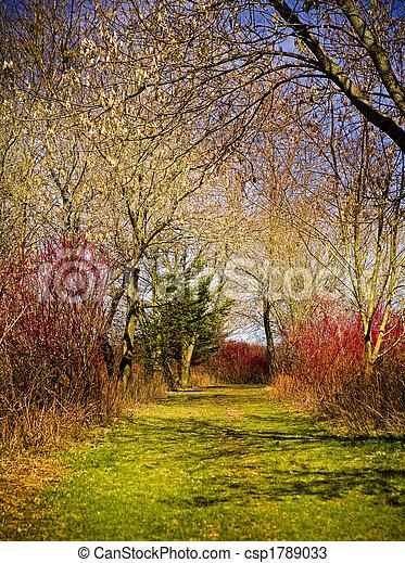 couleurs, nature - csp1789033