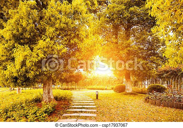 couleurs, porcelaine, automne - csp17937067