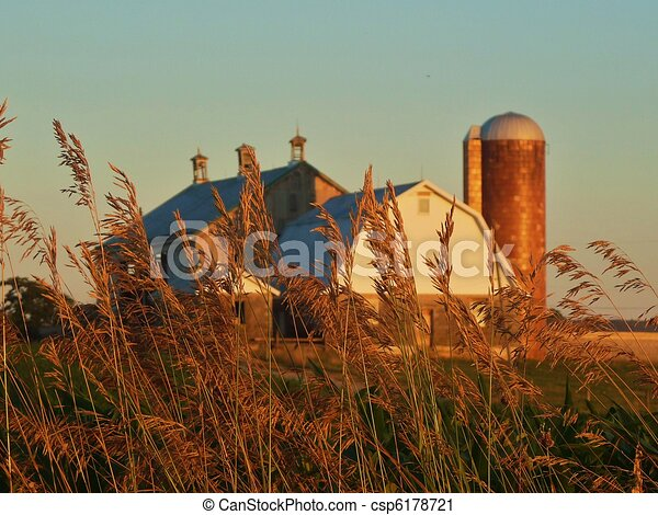 Country Farm Scene Barn In The Backgroundgrass Foreground