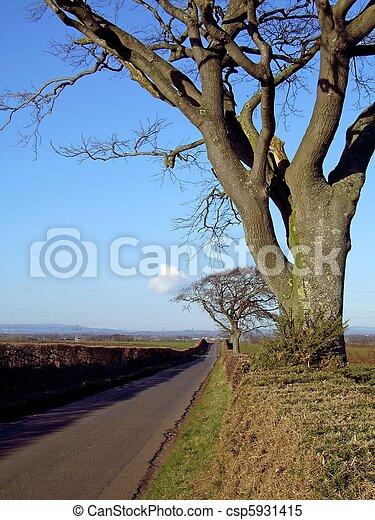 Country Lane 2 - csp5931415