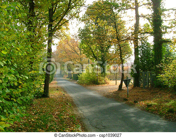 Country lane in Autumn - csp1039027