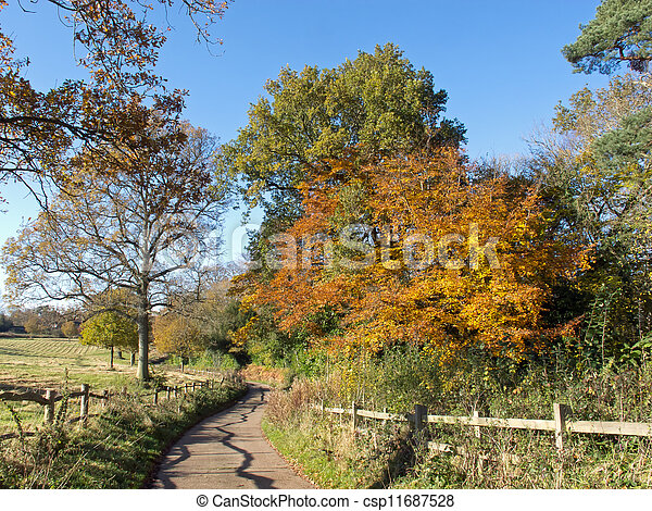 Country Lane in Autumn - csp11687528