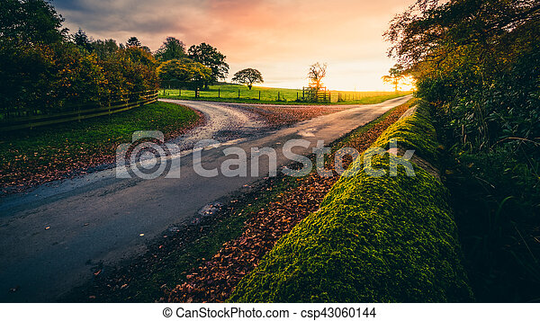 Country lane in autumn - csp43060144