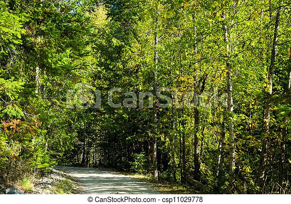 Country lane - csp11029778