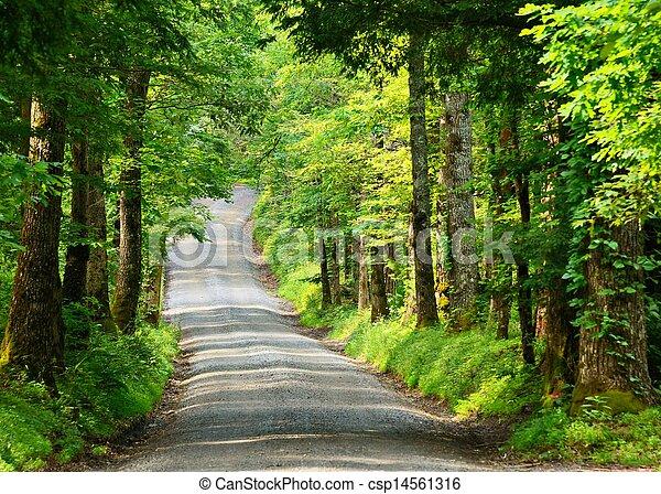 Country Lane - csp14561316