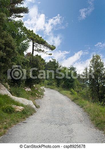 country lane - csp8925678