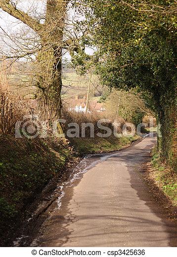 Country Lane - csp3425636