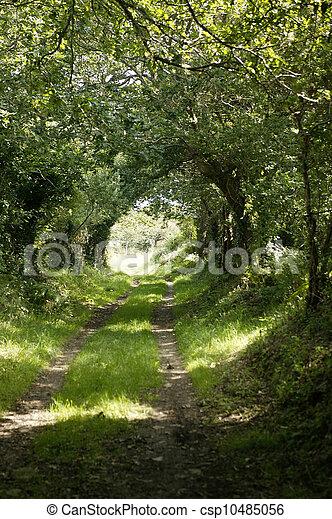 Country lane - csp10485056