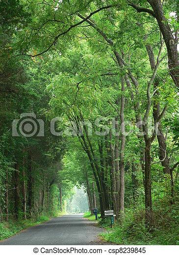 country lane - csp8239845