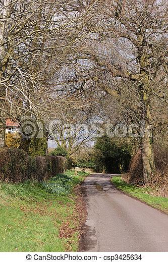 Country Lane - csp3425634