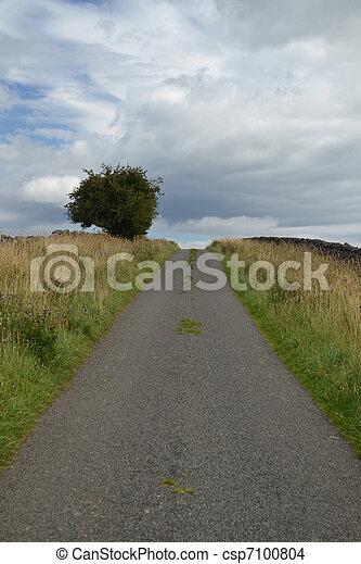 Country lane - csp7100804