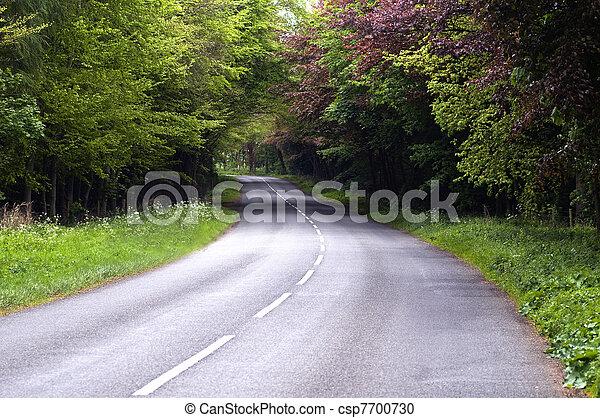 Country Lane - csp7700730