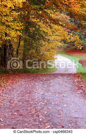 Country Lane - csp0466343