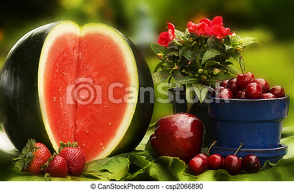 Country Red Fruits - csp2066890