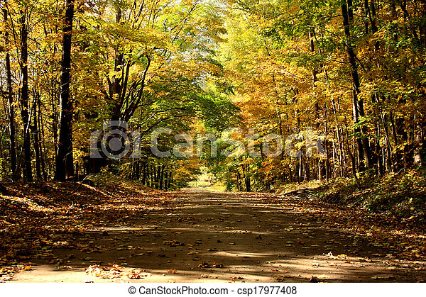 Country Road in Autumn - csp17977408