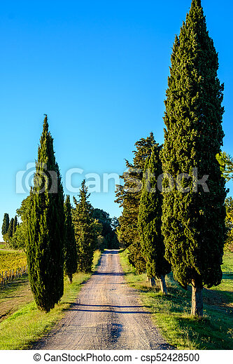 Country Road in Tuscany - csp52428500