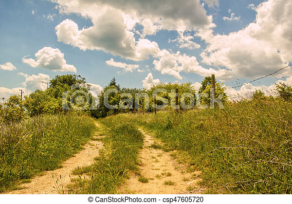 Country road through the fields - csp47605720