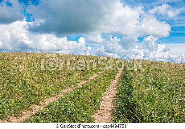Country road through the wheat fields - csp44947511