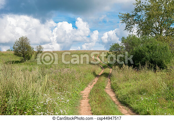 Country road through the wheat fields - csp44947517