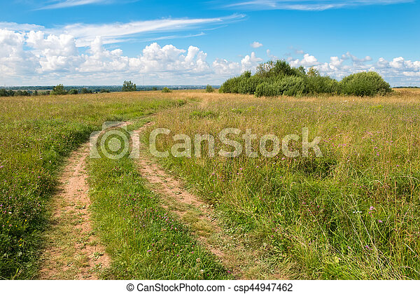 Country road through the wheat fields - csp44947462
