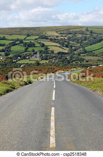 Country road to Widdecombe in the Moor, Dartmoor England.  - csp2518348