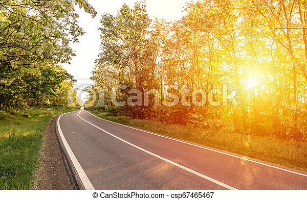 Country road with trees along - csp67465467