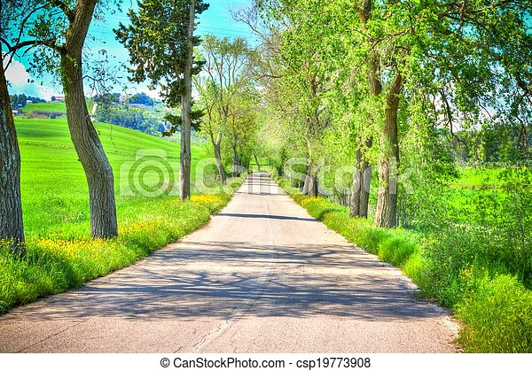 country road with trees along - csp19773908